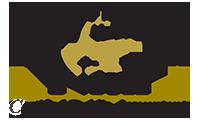Davidson & Nick CPAs Logo